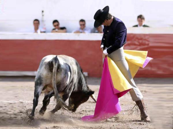 Exitoso festival en San Miguel