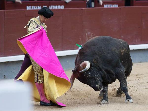 Oreja para Morenito; Caballero, herido
