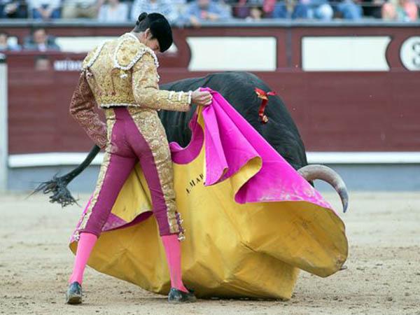 Alejandro Marcos destaca en Las Ventas