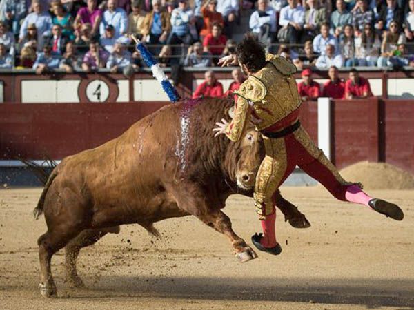 La entrega de Padilla destaca en Madrid