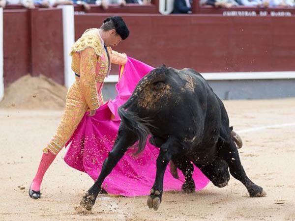 Rub�n Pinar destaca en Las Ventas